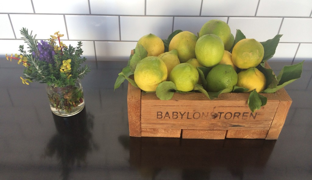 fresh lemons babylonstoren