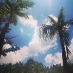 Sun city views