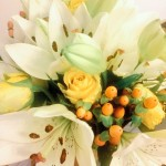 springtime flowers rockflower uk