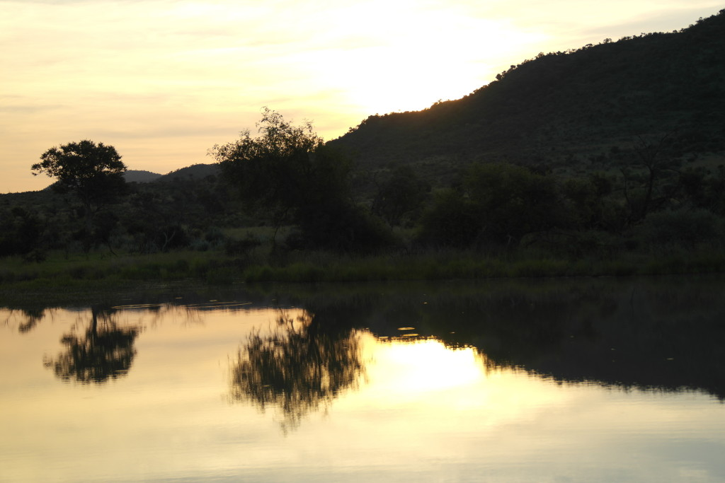 sunset pilanesberg