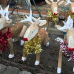 Lincoln Christmas Market - Reindeer StefanieGrace.com