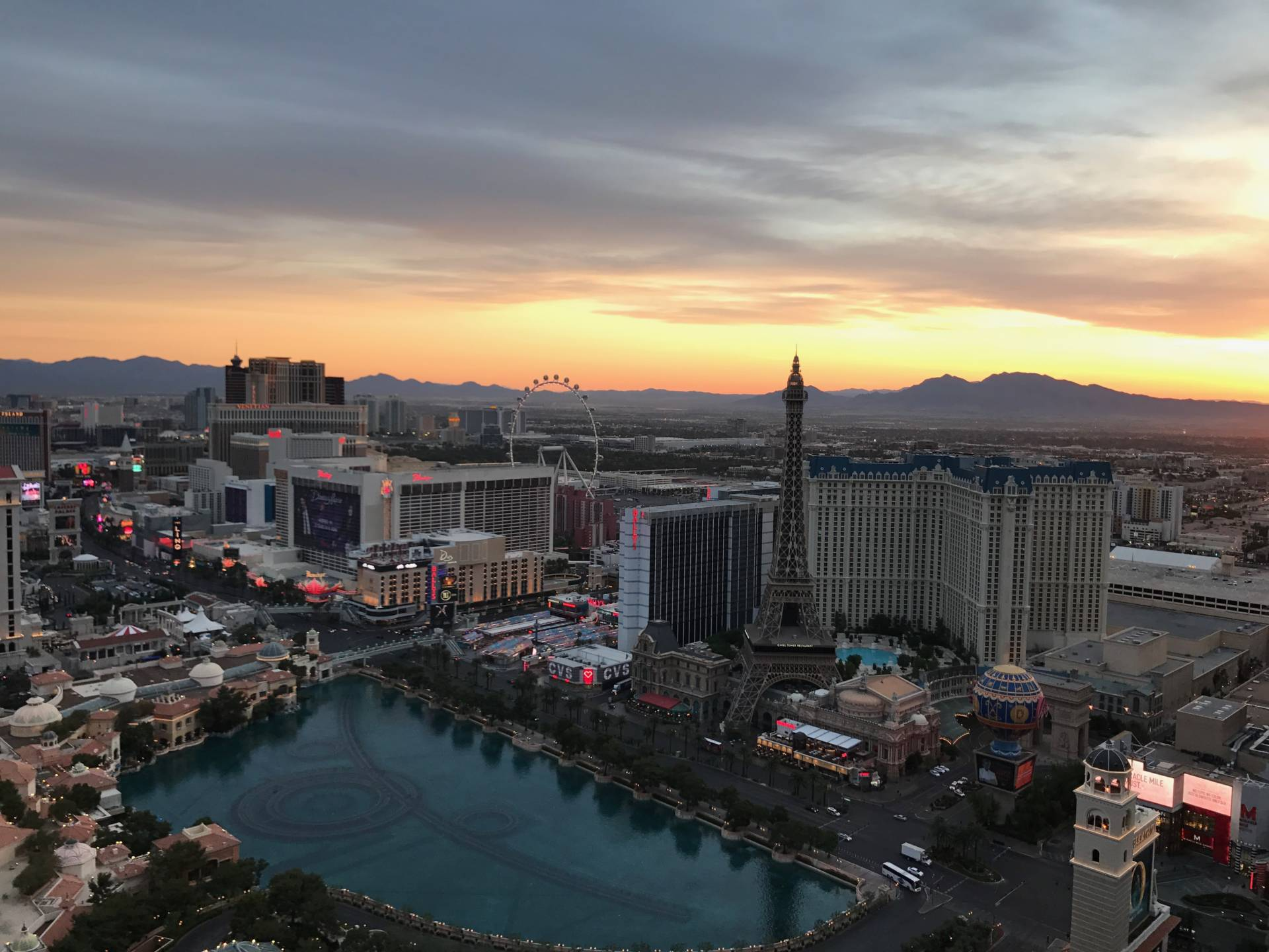 How to Survive a Week in Vegas - StefanieGrace.com